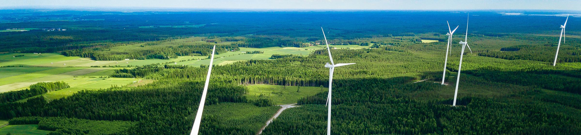 Windanlagen im Wald